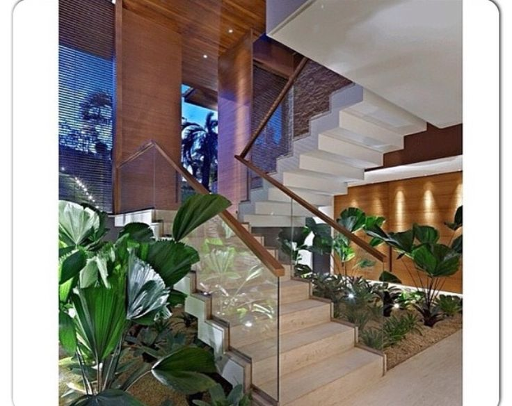 Jardim da vida a escada.