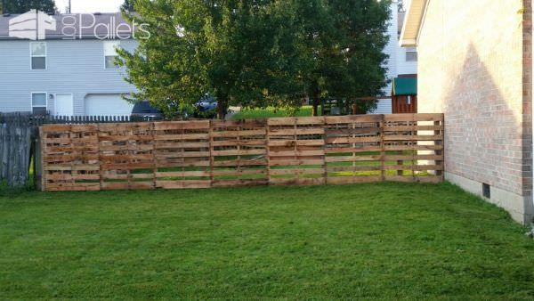 This Pallet Fence took about eight hours to finish using around 55-60 pallets. Thanks to Tractor Supply for the free pallets. This fencing project only cost around 40 dollars, too!