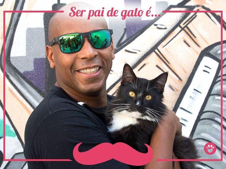 """371 curtidas, 3 comentários - Catland - Adoção de Gatinhos (@catlandrescue) no Instagram: """"Alegria de quem sabe que seu filho é um gato! Está pronto para ser um pai de gato? Visite nosso…"""""""