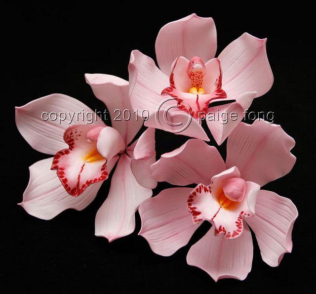 Gumpaste Orchid - Cymbidium by Paige Fong, via Flickr