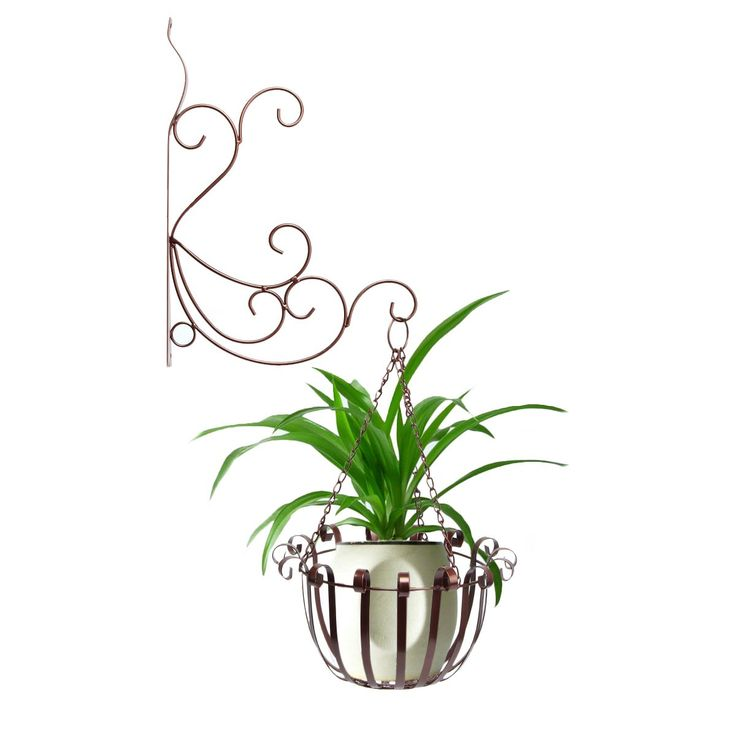 Dazone® Home Decor Wall Mount Hanger Plant Container Indoor or Outdoor Use Metal Flower Pot Holder Basket (Bronze)