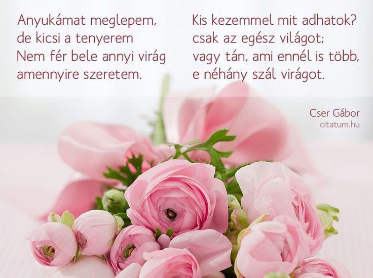 Cser Gábor versrészlete anyák napjára.