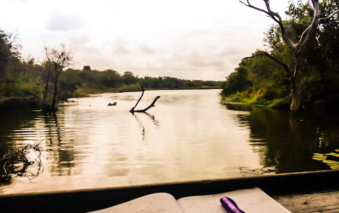 A great way to spend a few hours on a safari in Kruger Park is at one of the eleven bird and game-viewing hides. Bring a snack box, a few beverages and loads of patience. Bird and game-viewing at hides that overlook peaceful dams are meant to be ...