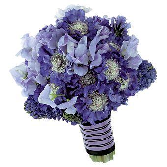 blue bouquet: scabiosa, sweet pea, hyacinth.    Pretty in Purple : Wedding Flowers Gallery