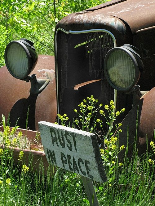 Rust in peace   Country Life