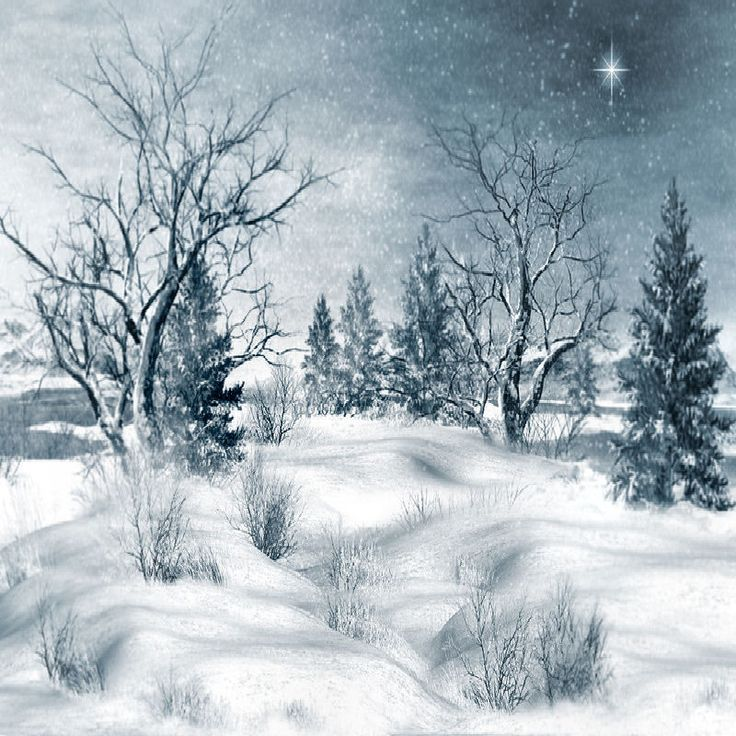 Snow Live Wallpaper: 25+ Best Ideas About Winter Backgrounds On Pinterest
