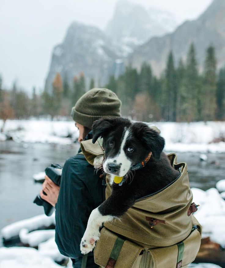 """coffee-n-mtns: """" The most essential thing to pack Photo by @jack_palma #americannomad #coffeenmtns """""""