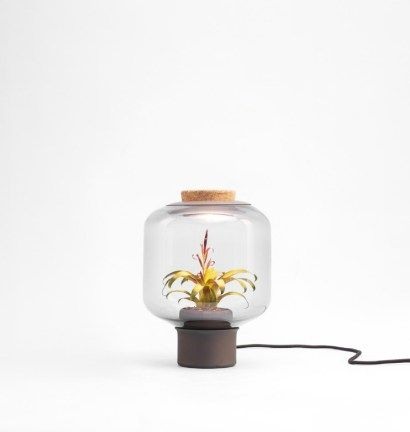 "it brings light into windowless places..     the Mygdal Lamp. German design studio Nui, formerly known as Studio We Love Eames has created a ""plant lamp"" that fa…"