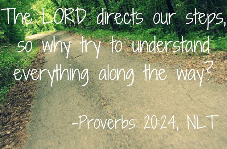 proverbs | Proverbs 20 (New International Version)
