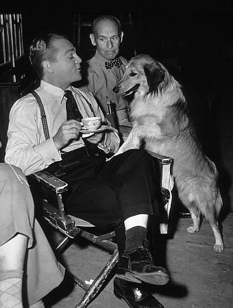 "James Cagney, James Gleason, Mr. Trouble (Dog) on The Set of ""Come Fill The Cup"" 1951 Warner"