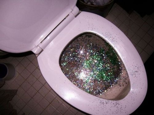 who took this picture of my toilet?Fairies, Laugh, Edward Cullen, Toilets, Parties Bus, Funny Commercials, Bathroom, Glitter, Unicorns