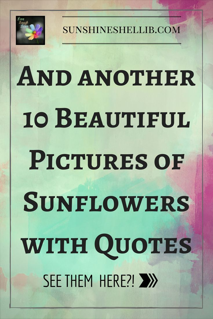 Another 10 Beautiful Pictures of Sunflowers with Quotes    SUN, FLOWERS, HAPPY, FUN, YELLOW, BRIGHT, BEAUTIFUL, HIPPIE,