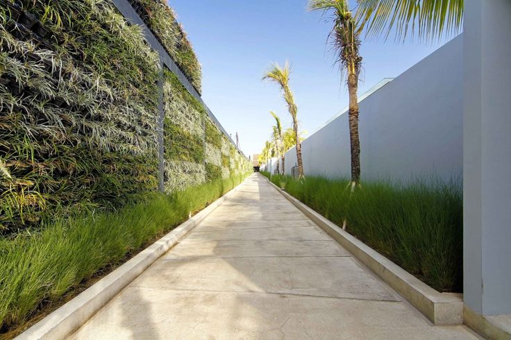 Check In: One Eleven Bali #HotelTour #Travel