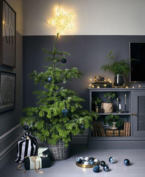Dark ornaments