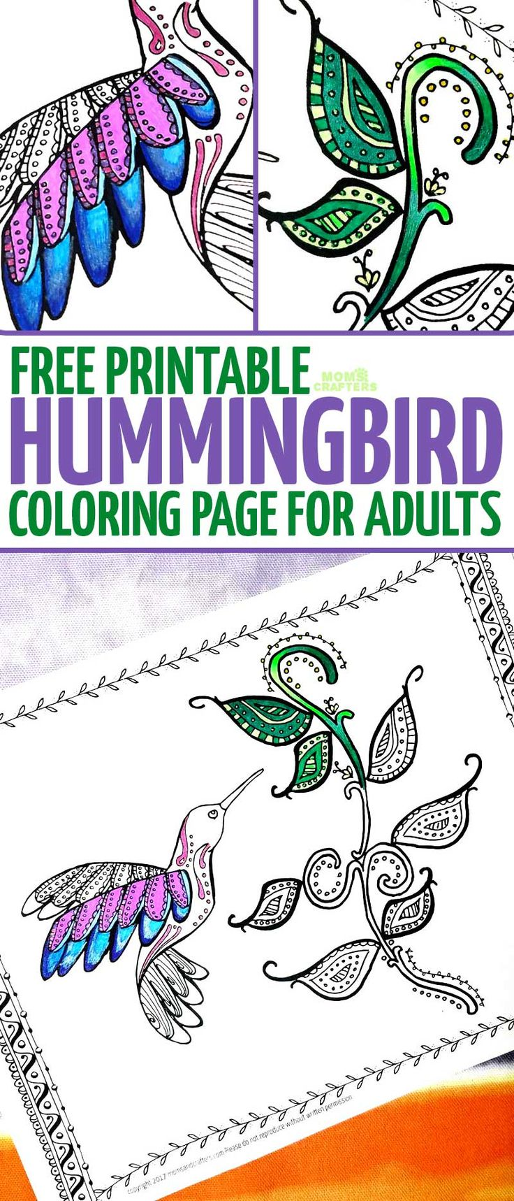 The zoology coloring book - A Free Printable Hummingbird Coloring Page