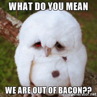 Image result for out of bacon meme