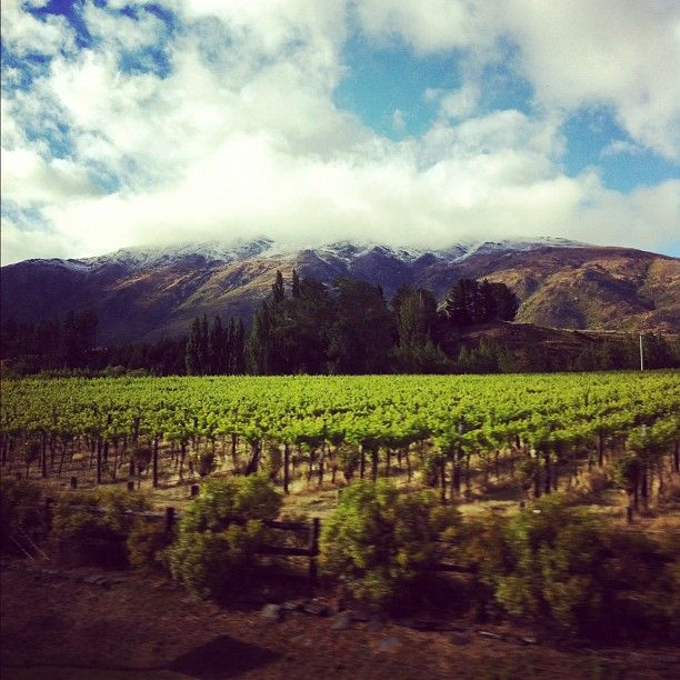 Summertime snow in Central Otago, NZ.