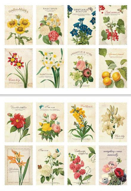 Vintage style botanical stickers