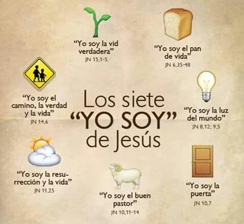 Jesús es la vid, el pan, la luz, la puerta, el pastor, la resurección, el camino, la verdad y la vida.