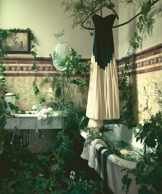 Fairy bathroomPoison Ivy, Nature, Green, Dreams Bathroom, Plants, Beautiful Bathroom, Gardens, The Dresses, Fairies Tales