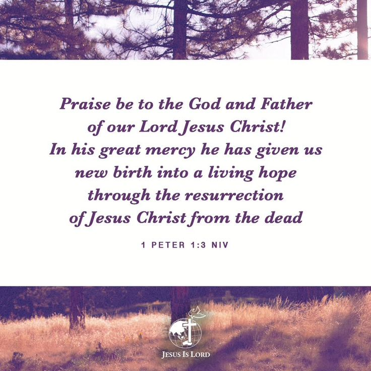 VERSE OF THE DAY  Praise be to the God and Father of our Lord Jesus Christ! In his great mercy he has given us new birth into a living hope through the resurrection of Jesus Christ from the dead 1 Peter 1:3 NIV #votd #verseoftheday #JIL #Jesus #JesusIsLord #JILWorldwide www.jilworldwide.org
