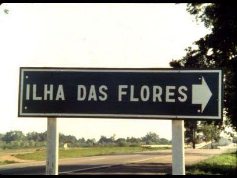 Curta: Ilha das flores  Sobre o polegar opositor ou : um convite a repensar seus VALORES como pessoa.