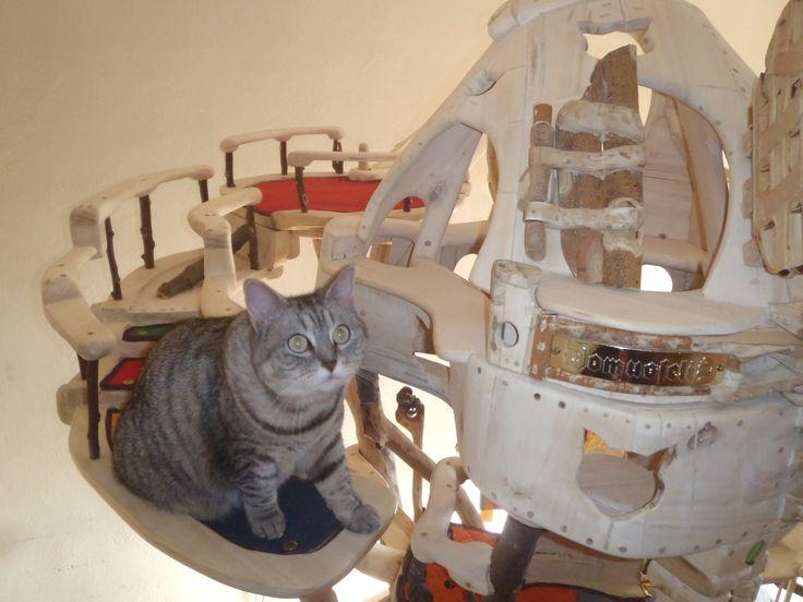 DomusfeliS - special playzones for cats - Unique pieces for unique cats, sculptures for cats, untreated precius wood: plum, apricot, seasoned poplar, birch, oak and piracanta. #catcastle #castlecat #cattower #catcondo #cattree #catenclosure #cattoy #petdesign #catforniture #felinelovers #catfrendlyhouse