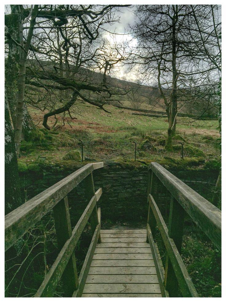Wooden bridge over Ambleside