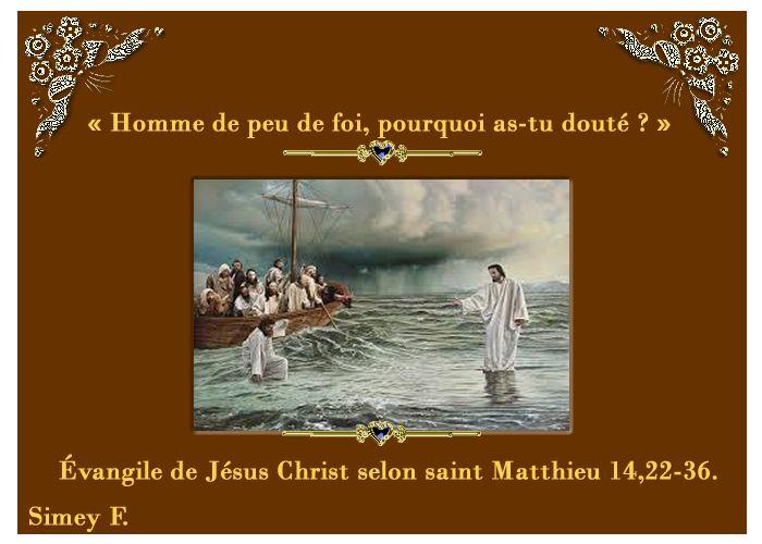 Psaumes-probervios et des citations bibliques: La nuit de la foi, Évangile de Jésus Christ selon ...