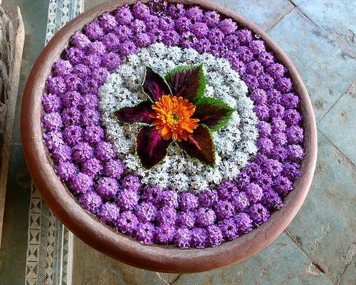 Water Bowl Decoration 113 Best Rangoli Images On Pinterest  Flower Decorations Diwali