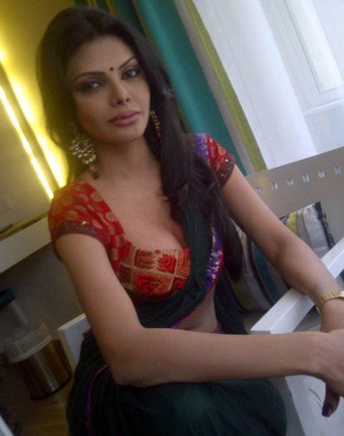 Sherlyn Chopra Cute Sari Blouse  Sari Blouse Fashion -4177