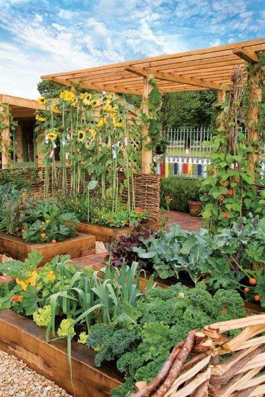best pretty vegetable garden ideas 1 vegetable garden backyard rh pinterest com