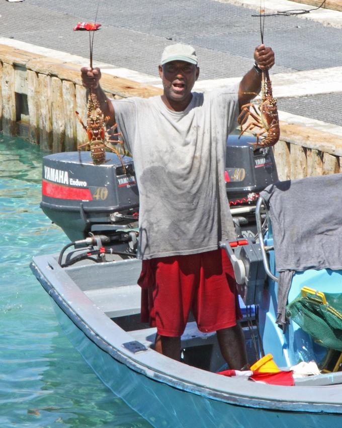 17 Best Images About St Croix Usvi Caribbean On