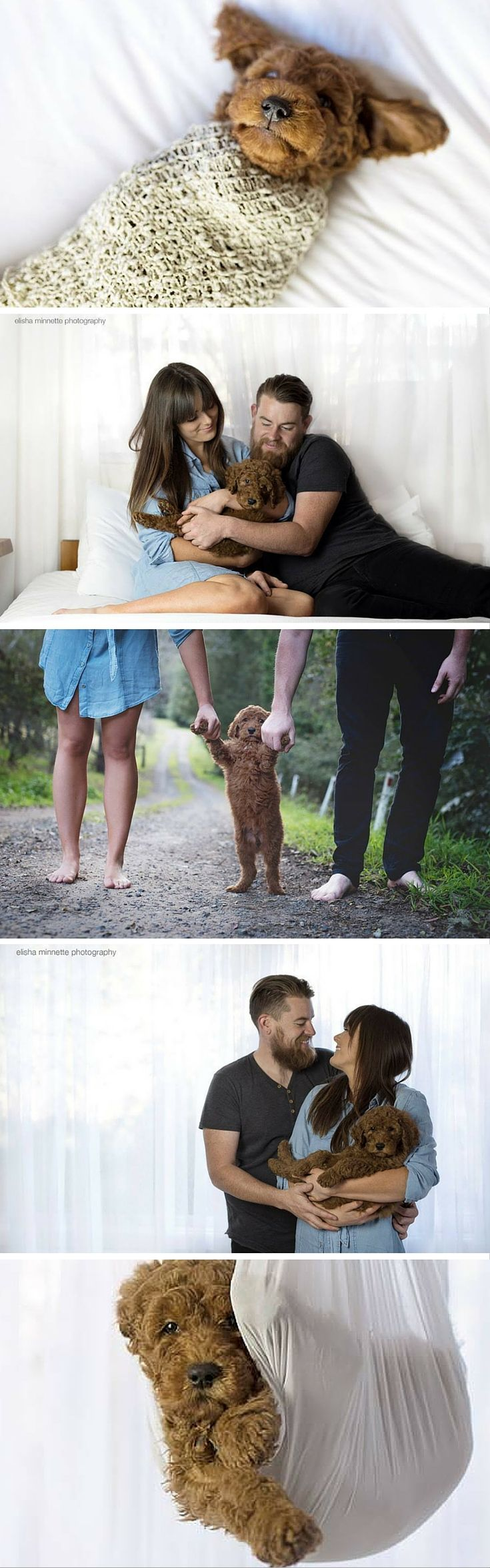 Plenty of new parents are willing to spend lots of time and money to get perfectly posed, professional portraits with their babies. Well this Australian couple did just that — with their furry little puppy.