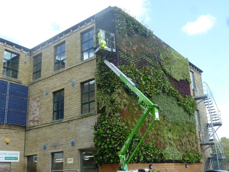 Eco-Wall - gardening with a difference - our client Ploughcroft carrying out a plant makeover!
