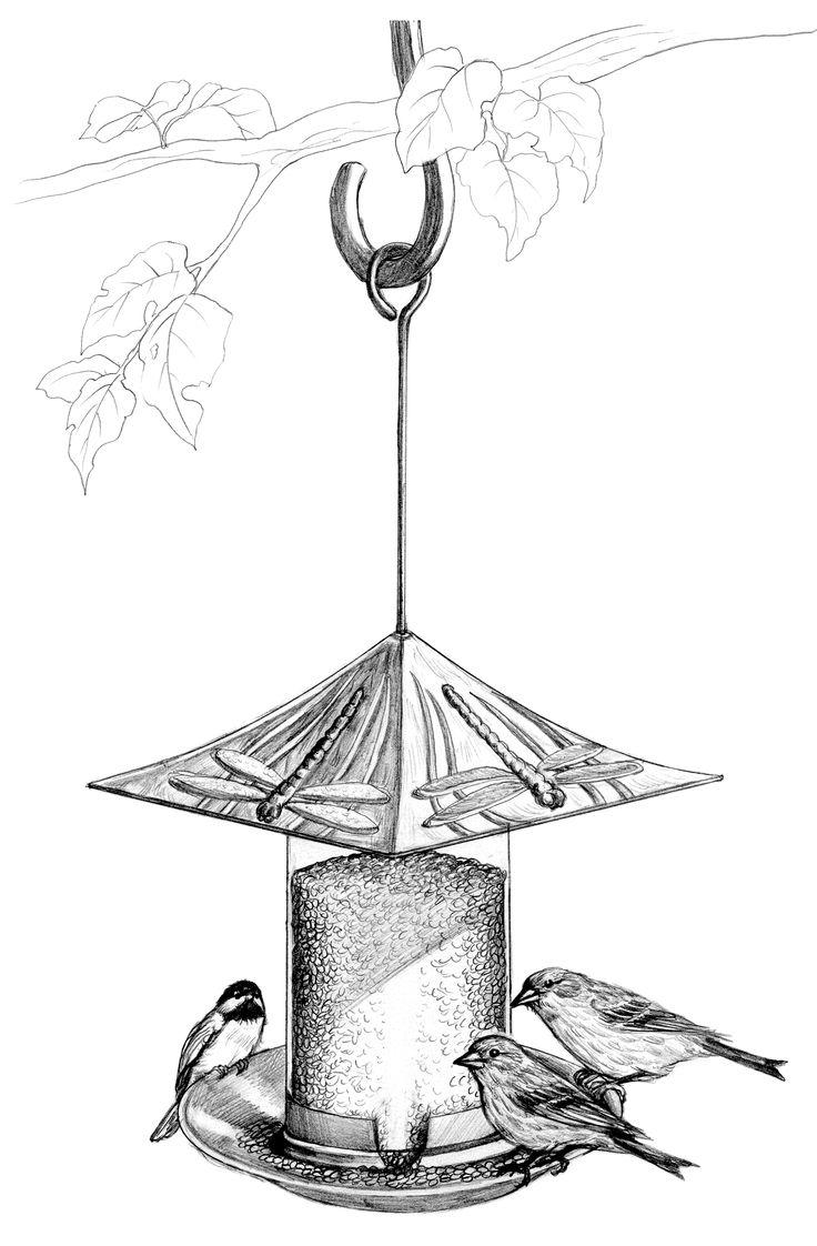 drawing feeding bird - Google'da Ara | Kuşlar- Birds | Pinterest ... Raccoon Drawing