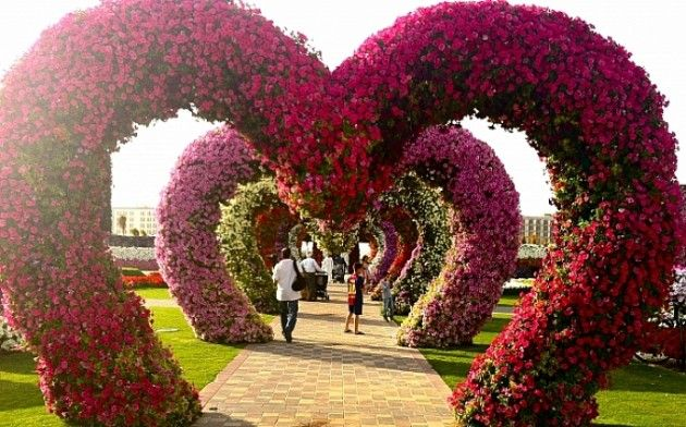 Dubai Miracle Garden-The most Attractive Garden in the World | Daily source for inspiration and fresh ideas on Architecture, Art and Design