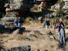 The Num-Num Trail   Mpumalanga