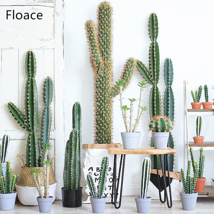 Cheap plant bonsai, Buy Quality plants artificial directly from China plant plants Suppliers: 1PC Artificial Succulents Cactus Plants bonsai Desert Artificial Plant For Table Garden Home Decoration