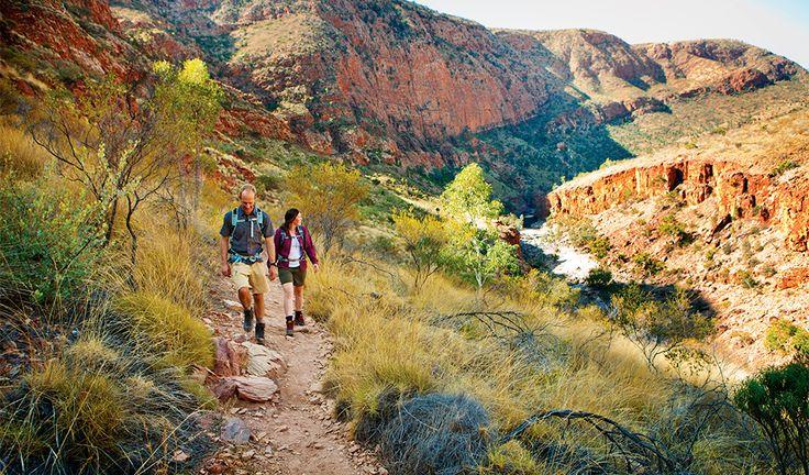 Larapinta trail, NT