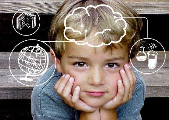 Inteligencias múltiples y Neurodidáctica. Educación Especial