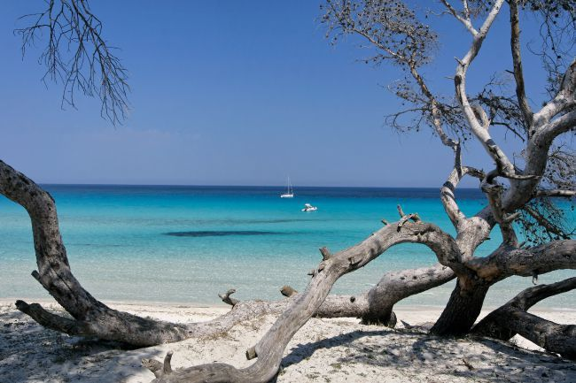 Au cœur des plus belles plages de Corse