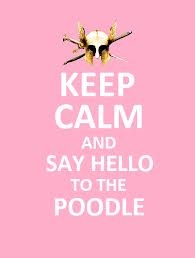 ... say hello to the poodle [Percy Jackson and the Olympians: The Lightning Thief]