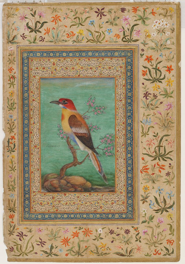Bee-eater; miniature on the verso of a leaf from the Kevorkian album, 1800s, India, Mughal dynasty.