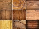 standard di legno secco marrone stock photography