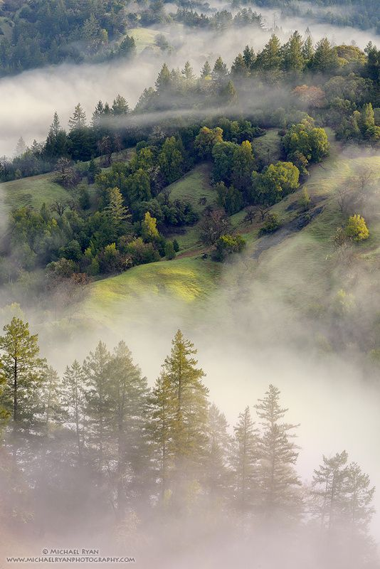~~The Comfort of Home | early morning fog and soft sunrise light blanket the rolling hills of Sonoma County, California | by Michael Ryan~~