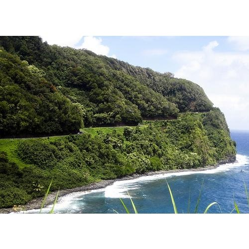 Road to Hana. A must for anyone's bucket list.