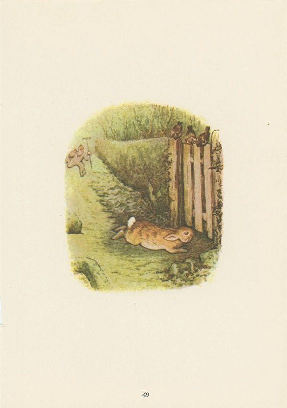Beatrix potter antique print