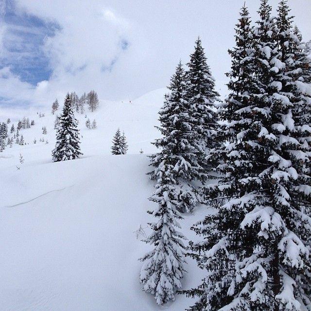 The winter is back! Last night it snowed almost half of meter new powder snow! Loving it emoji #alpstaffeten #stsalpresor #valgardena #skists