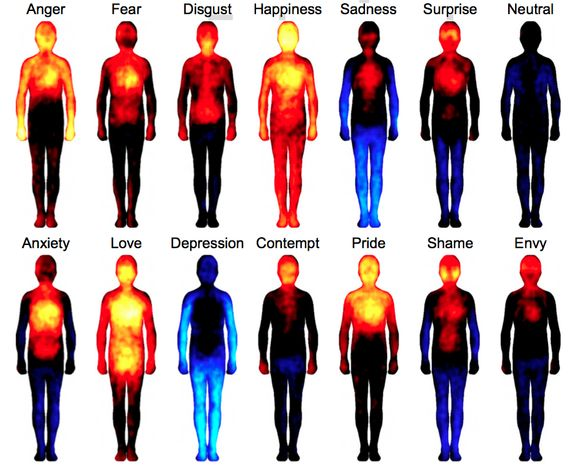 Mapping How Emotions Manifest in the Body - This could be helpful pumping up descriptions for emotions.